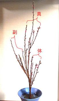 2014-02-01syouka2.JPG