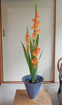 2014-06-21syoka_web.jpg