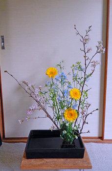 2015-02-07moribana.jpg