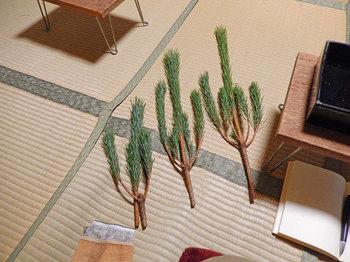 2013-12-28syougatsu2.jpg